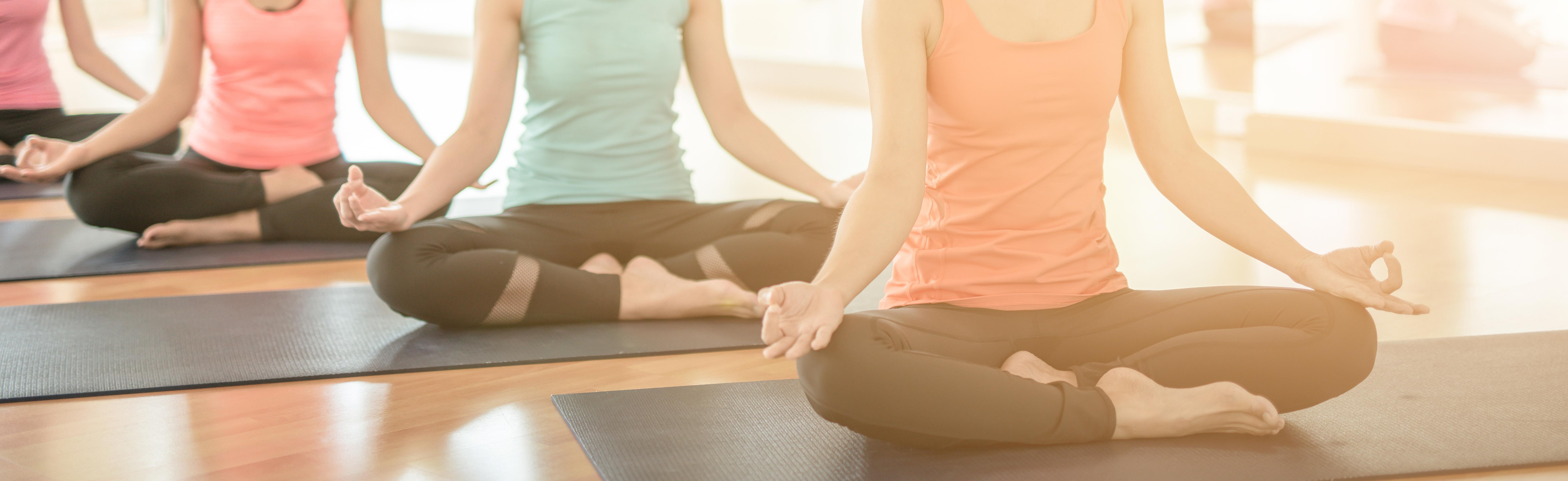 Hatha Flow Yoga Linda
